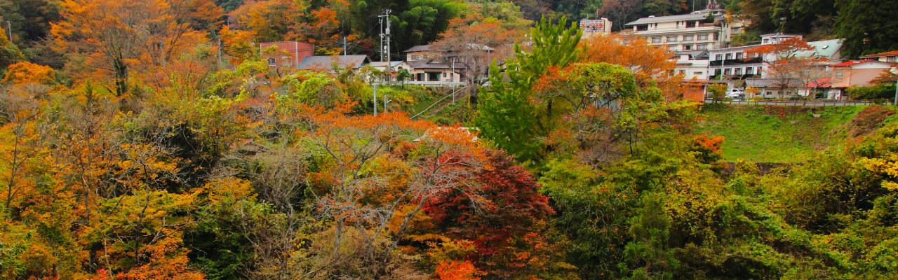 鎌先温泉について